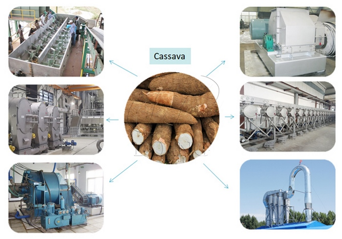 cost of cassava starch processing plant