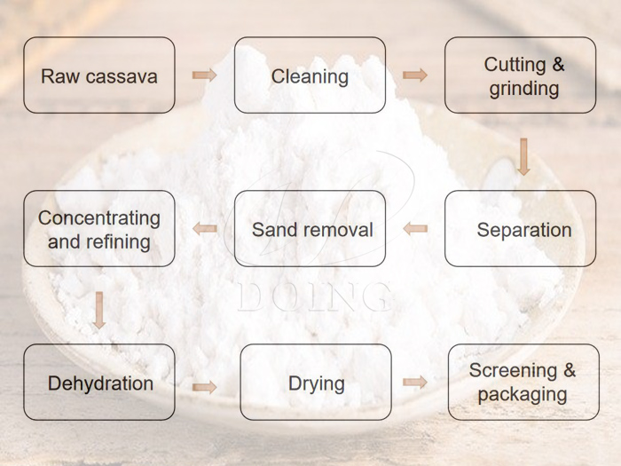 Overview of cassava starch processing in Cambodia