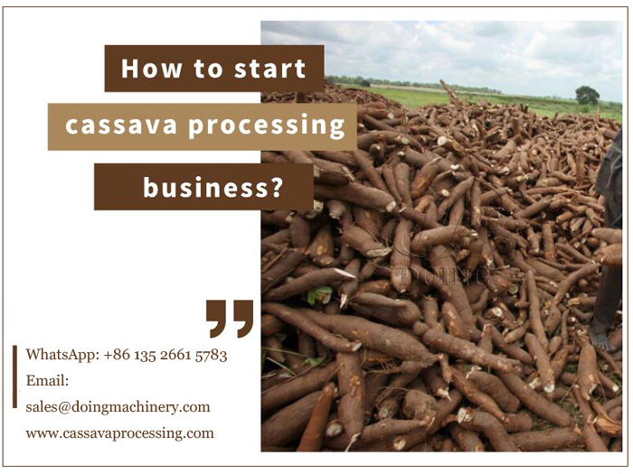 How to start cassava processing business?