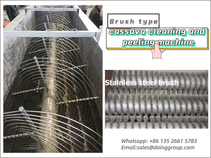 What is the brush type cassava cleaning and peeling machine?