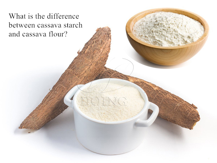 Difference between cassava starch and cassava flour